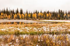 Silver Lake and Marsh with an Early Fall Snow up Big Cottonwood Canyon. Next to the Brighton Ski Resort royalty free stock photo
