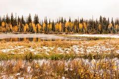 Silver Lake och träsk med en tidig nedgång snöar upp den stora poppelkanjonen Royaltyfri Foto