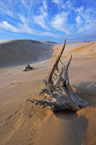 Silver Lake Sand Dunes Stock Photo