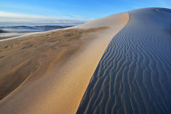 Silver Lake Sand Dunes Royalty Free Stock Photography