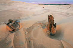 Silver Lake Sand Dunes Stock Photos