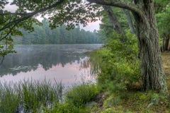 Silver Lake in Sullivan County Royalty-vrije Stock Foto's