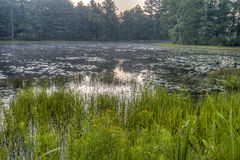 Silver Lake in Sullivan County Stock Fotografie