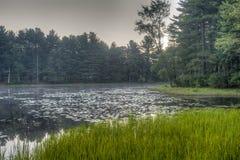 Silver Lake in Sullivan County Stock Foto's