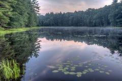 Silver Lake in Sullivan County Royalty-vrije Stock Afbeelding