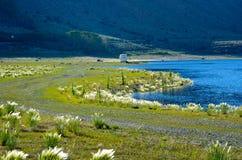 Silver Lake-Toevlucht in Juni-Meer Californië Royalty-vrije Stock Foto's