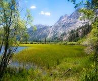 Silver Lake Ucieka się Obraz Royalty Free