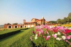 Silver Lake Vineyard, Pattaya Thailand Royalty Free Stock Images