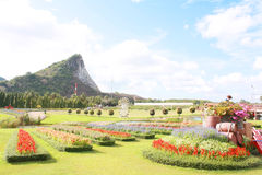 Silver Lake Vineyard, Pattaya Thailand Royalty Free Stock Photo