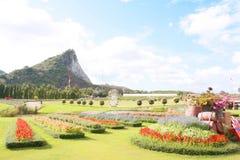 Silver Lake-Wijngaard, Pattaya Thailand Royalty-vrije Stock Foto