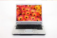 Silver Laptop Computer. Showing search for flowers on internet stock photo