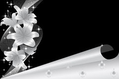 Silver lily 2 Royalty Free Stock Images
