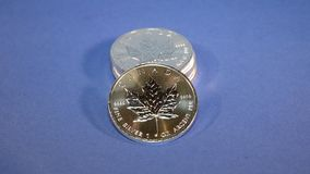 Silver Maple Leaf, Bullion Coins stock video footage