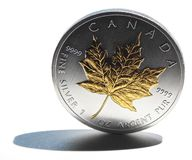 Silver Maple Leaf coin. A Canadian silver Maple Leaf coin on white background Royalty Free Stock Photography