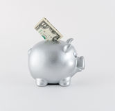 Silver Metallic Piggy Bank With Banknote Royalty Free Stock Images
