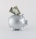 Silver Metallic Piggy Bank With Two Banknotes Stock Photography