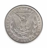 Silver Morgan dollar isolated on white royalty free stock images