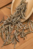 Silver Needle Tea stock images