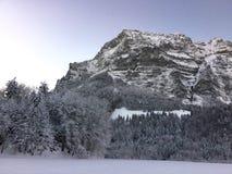 Silver och förkylningmorgon i österrikiska fjällängar Arkivfoton