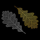 Silver- och guldeksidor Royaltyfri Foto