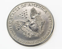 Silver one dollar coin macro Stock Photos