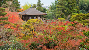 Ginkakuji temple at autumn by top view Royalty Free Stock Image