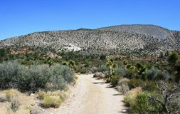 Silver Peak Approach. Trail to Silver Peak in the high desert of California Stock Photography