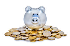 Silver Piggy Bank and Coins Stock Photo