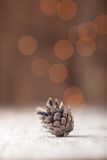 Silver Pine cone on bokeh background Royalty Free Stock Image