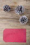 Silver pine cones and red gift tag Stock Photography