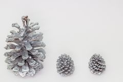 Silver pine cones Royalty Free Stock Image