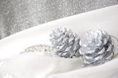 Silver pine cones on white Royalty Free Stock Photo