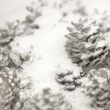 Silver Pine Cones in the White Snow Royalty Free Stock Images