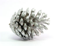 Silver pinecone. Christmas decoration, isolated white background stock image