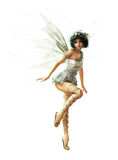 Silver Pixie CA Royalty Free Stock Photography