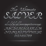 Silver Platinum Font and Numbers. Eps 10 Vector, Editable for any Background Royalty Free Stock Photos