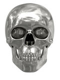 Silver or platinum skull isolated on white Royalty Free Stock Photography