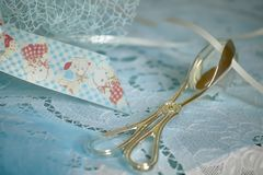 Free Silver Pliers Dipped In Blue Decorations Used To Collect And Don Royalty Free Stock Images - 107071379