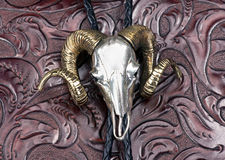 Silver Ram Head Indian  Bolo Tie. Royalty Free Stock Photos