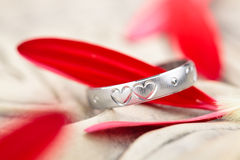 Silver Ring and flower  petals. Royalty Free Stock Photo