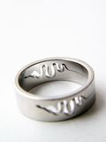 SILVER RING with snake stock photography