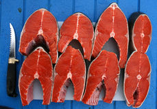 Silver salmon Royalty Free Stock Images