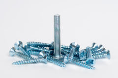 Silver screws bolts Royalty Free Stock Image