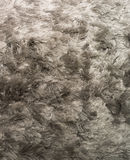 Silver Shagpile Carpet Stock Photography