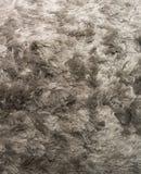 Silver Shagpile Carpet Stock Photography