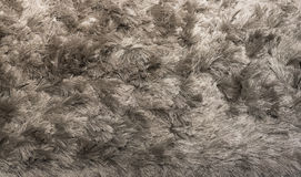 Silver Shagpile Carpet Royalty Free Stock Image