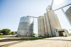 Silver, shiny agricultural silos Stock Photography