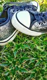 Silver shoes in wildflowers,. Standing fashion footwear flowers grass,still lifec Royalty Free Stock Photo