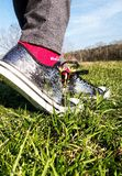 Silver shoes in wildflowers, Royalty Free Stock Image