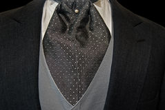 elegant tuxedo with cravat Stock Images